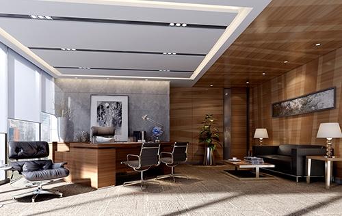 木棉树软件开发公司办公室